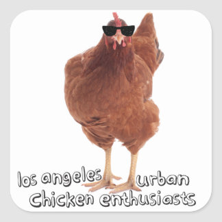 Chicken Stickers! Square Sticker