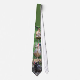 Chicken tie for men
