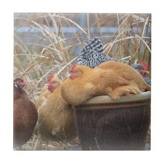 Chicken Tile