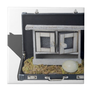 ChickenCoopBriefcase031415.png Small Square Tile