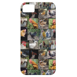 Chickens And Roosters Photo Collage, Case For The iPhone 5