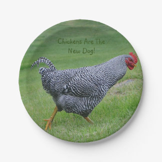 Chickens Are The New Dog Paper Plate