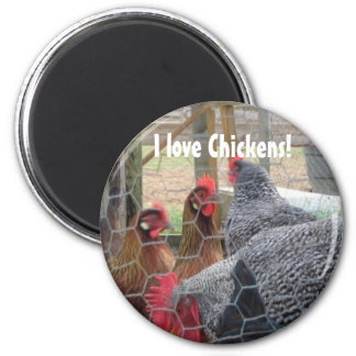 Chickens Magnet