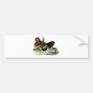 Chickens Vintage Animal Bumper Sticker