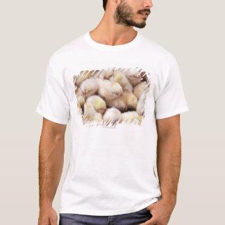 chicks, brood of chickens T-Shirt