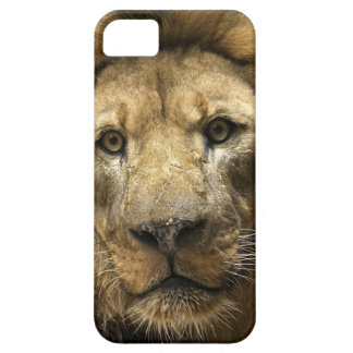 Chicks Dig Scars iPhone 5 Covers