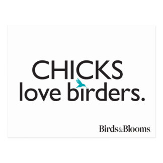 Chicks Love Birders Postcard