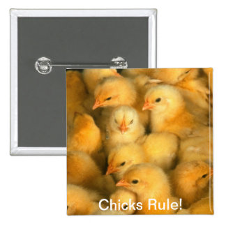 Chicks Rule! Baby Chicks Humorous Humor Funny Pinback Button