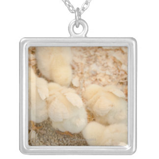 chicks silver plated necklace