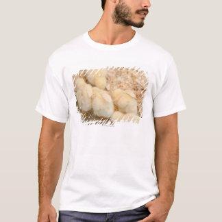 chicks T-Shirt