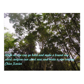 Chico Xavier Quotes Postcard