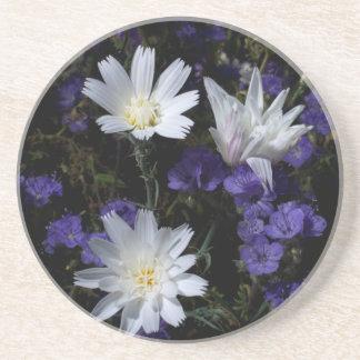 Chicory and Phacelia Wildflowers Coaster