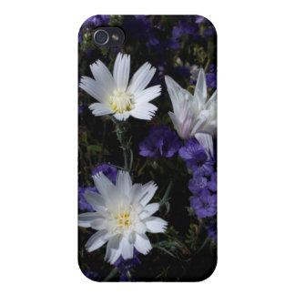 Chicory and Phacelia Wildflowers iPhone 4 Cover