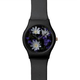 Chicory and Phacelia Wildflowers Watch