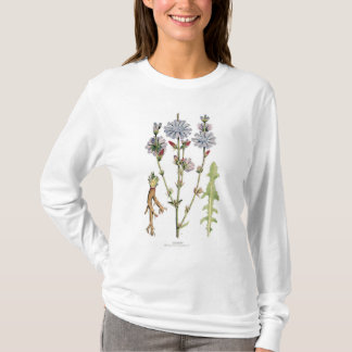 Chicory Vintage Botanical T-Shirt