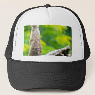 Chief meerkat trucker hat
