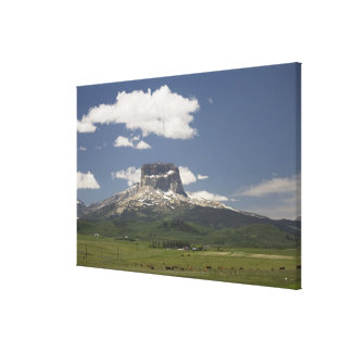 Chief Mountain With Pastures Of Grazing Cattle Canvas Print