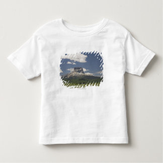 Chief Mountain With Pastures Of Grazing Cattle Toddler T-Shirt