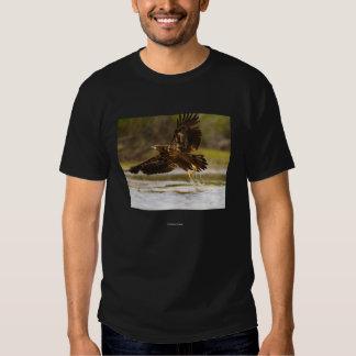 Chief Seattle 1 Tee Shirts
