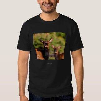 Chief Seattle 2 T-shirts