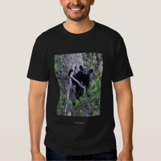 Chief Seattle 2 Tees