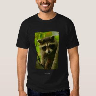Chief Seattle 2 Tshirt