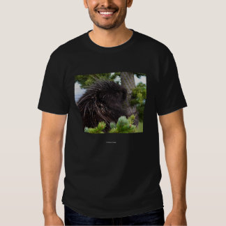 Chief Seattle 3 Tee Shirt