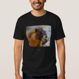 Chief Seattle 3 Tees