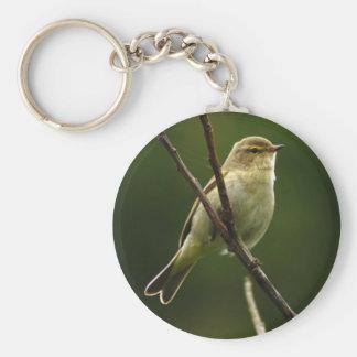 Chiffchaff bird perched on branch basic round button key ring