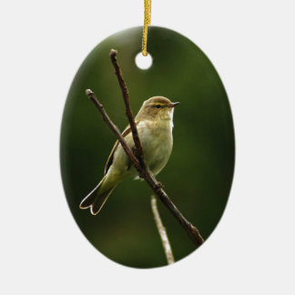 Chiffchaff bird perched on branch ceramic oval decoration