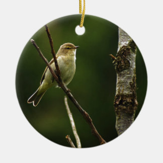Chiffchaff bird perched on branch round ceramic decoration