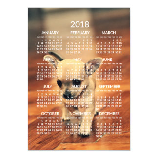 Chihuahua 2018 Calendar Photo Magnetic Card 5x7