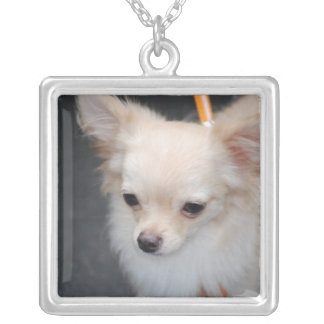 chihuahua-29.jpg personalized necklace