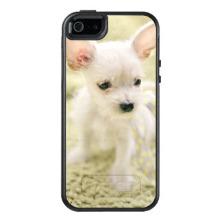Chihuahua And Maltese Puppy OtterBox iPhone 5/5s/SE Case
