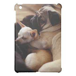 Chihuahua and Pug sleeping, close-up iPad Mini Case