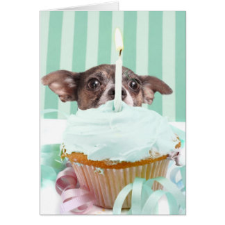 Chihuahua birthday cake card