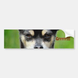 Chihuahua! Bumper Sticker
