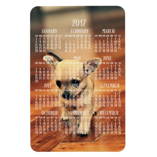 Chihuahua Calendar 2017 Photo Magnet 4x6 Large