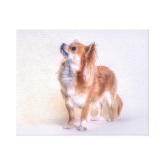 Chihuahua canvas