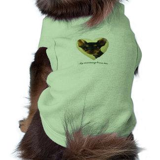 Chihuahua coat shirt