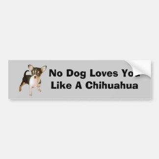 Chihuahua Cutie Bumper Sticker Car Bumper Sticker