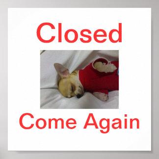 Chihuahua Dog Closed Sign Sleeping