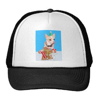 chihuahua dog eating gingerbread man trucker hats