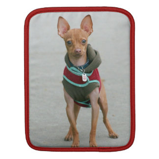 Chihuahua dog iPad sleeve