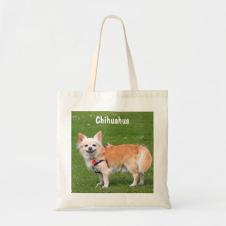 Chihuahua dog long-haired beautiful photo portrait budget tote bag