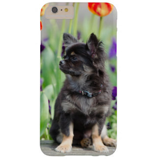 Chihuahua dog lovers photo cute iphone 6 case barely there iPhone 6 plus case
