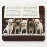 Chihuahua Dog Mouse Pads