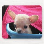 Chihuahua Dog Mousepad