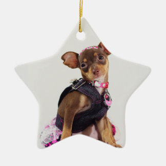 chihuahua dog range christmas ornament