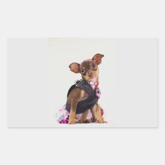 chihuahua dog range rectangular stickers